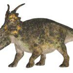 アケロウサウルス