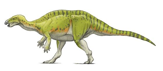 カンプトサウルス